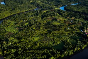 UN Decade of Ecosystem Restoration 2021 – 2030 Initiative proposed by El Salvador with the support of countries from the Central American Integration System (SICA)