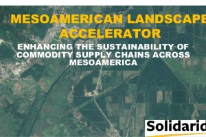 Mesoamerican landscape accelerator: Enhancing the sustainability of commodity supply chains across Mesoamerica