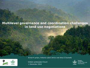 Multilevel governance and coordination challenges in land use negotiations