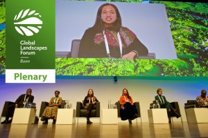 """Voices of the Landscapes"" Plenary"