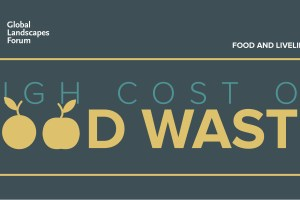 Infographic: High cost of food waste