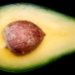Say no to avocados, warns new IPCC report