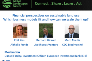 Financial perspectives on sustainable land useWhich business models fit and how can we scale them up?
