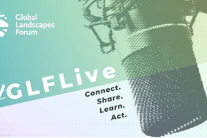 Climate change and COVID-19 explained in GLF Live Series