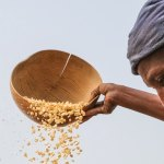 Ways COVID-19 could lead to less hunger in Africa