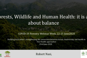 Forests, Wildlife and Human Health: it is all about balance