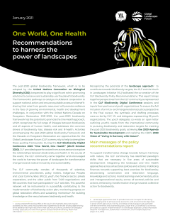 One World, One Health: Recommendations to harness the power of landscapes – Summary