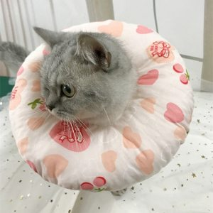 Cat Dog Recovery Wound Healing Protective Collar Anti-bite