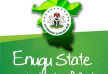 Enugu State Government Says Yellow Fever Was The Cause Of Unusual Deaths In Enugu Ezike