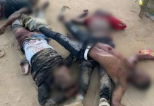 Four suspected armed robbers in Delta gun down by Soldiers