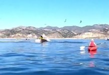 Video of two female California kayakers Julie McSorley and Liz Cottriel who escaped being swallowed by humpback whale