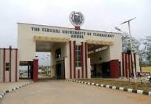 Deputy Registrar in the Federal University of Technology, FUTA Amos Arijesuyo Shot Dead By Suspected Kidnappers