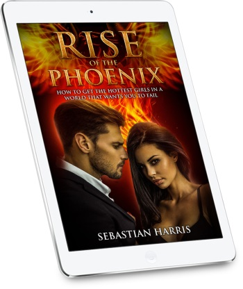 rise of the phoenix tablet cover
