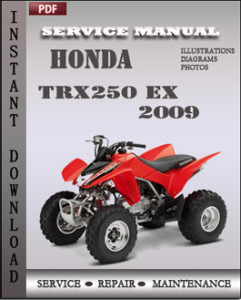 Honda TRX250 EX 2009 global