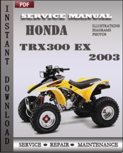 Honda TRX300 EX 2003 global