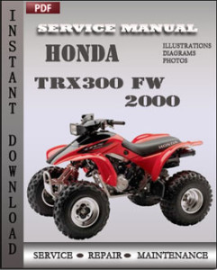 Honda TRX300 FW 2000 global