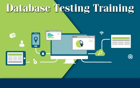 Database Testing Training