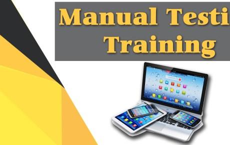 Manual Online Testing Training