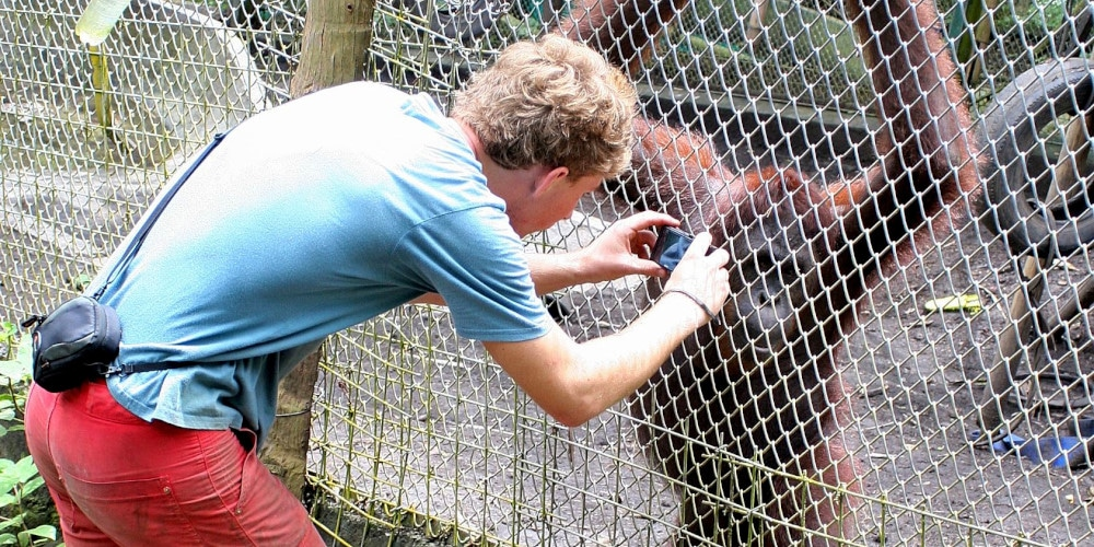 Photo time for Volunteer at the Indonesai Wildlife Sanctuary