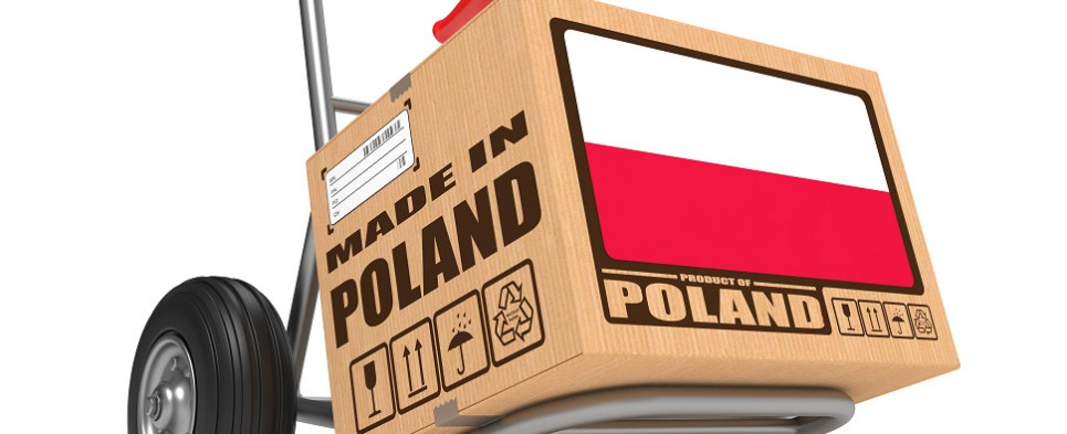 Logistics space in Poland and the Netherlands acquired by Gramercy Europe handles shipments of import cargo and shipments of export cargo in international trade.