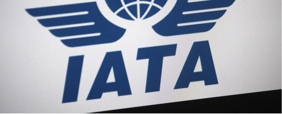 IATA numbers showed more air shipments of export cargo and import cargo in international trade month over month but not year over year.