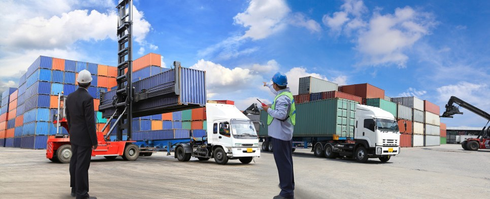 Software manages shipments of export cargo and import cargo in international trade.