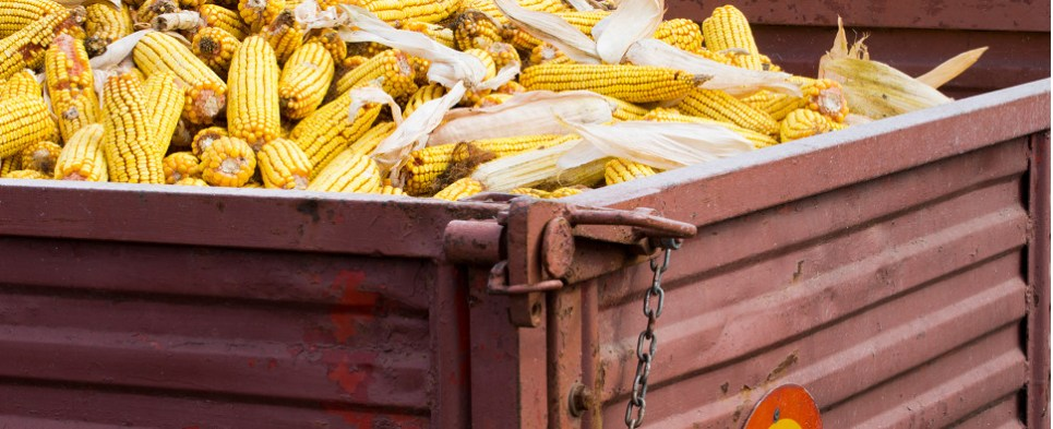New US regulations cover food shipments of export cargo and import cargo in international trade.