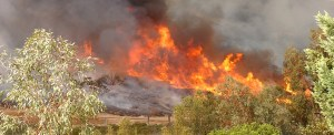 Cargo Transportation Easing in Fire-Ravaged Southern California