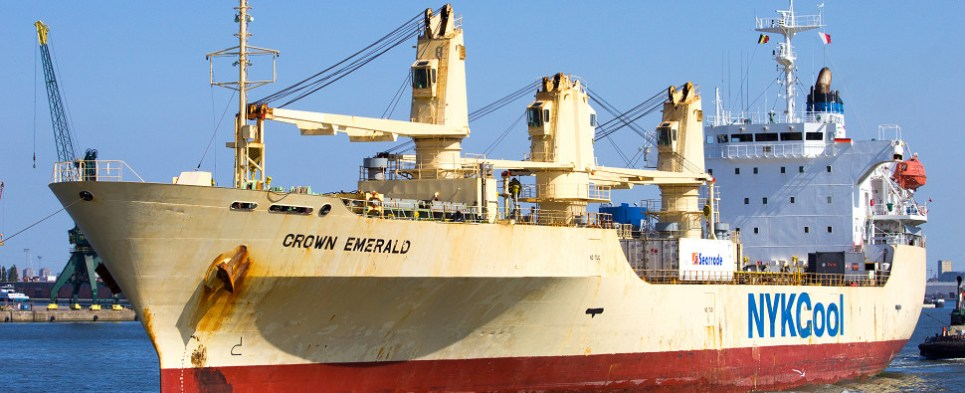 reefer ocean carriers will be carrying more shipments of export cargo and import cargo in international trade.