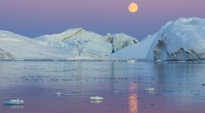 The Arctic will be seeing more traffic of shipments of export cargo and import cargo in international trade.
