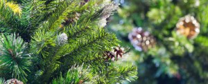 XPO Logistics Distributes Half a Million Christmas Trees to Michaels Stores