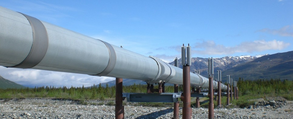 Alaksa pipeline project could yield more shipments of export cargo and import cargo in international trade.
