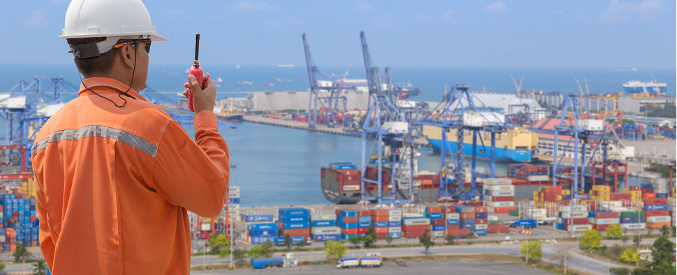 DPP provides service to buyer in transactions involving shipments of export cargo and import cargo in international trade.
