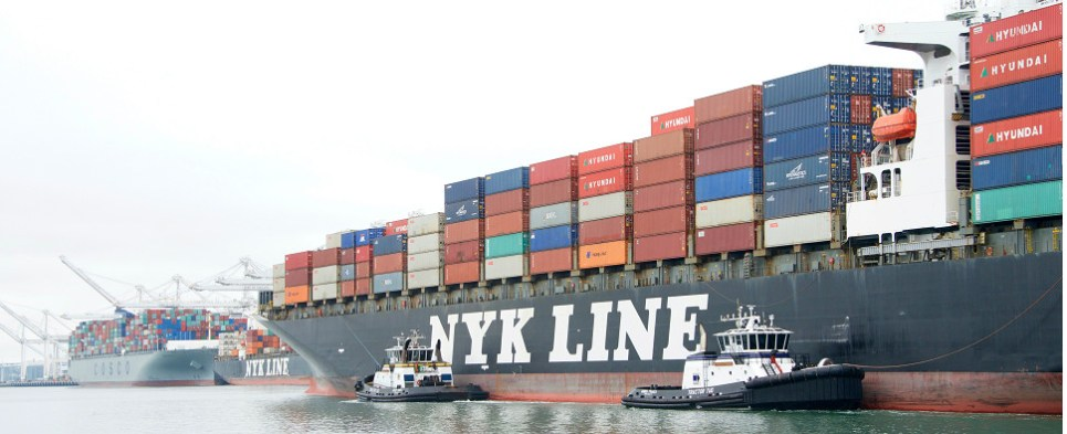 Japanese carriers expect to handle more shipments of export cargo and import cargo in international trade.
