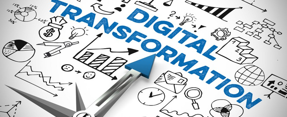 Digital transformation can help companies with shipments of export cargo and import cargo in international trade.