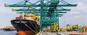 Port of Virginia Orders Four New Cranes