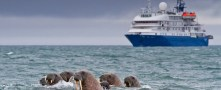 Arctic routes will see more shipments of export cargo and import cargo in international trade.