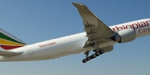 Ethiopian Airlines is carrying shipments of export cargo and import cargo in international trade to Miami.