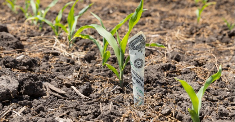 agricultural subsidies