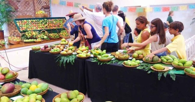 PAKISTAN HOSTS ONE OF THE LARGEST MANGO FESTIVALS IN DUBAI