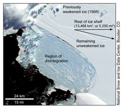 Wilkins Ice Shelf faces imminent breakup