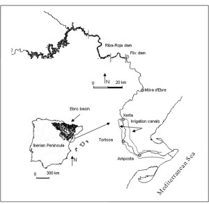 Localisation of the Ebro river basin and its delta (NE Iberian Peninsula, Spain)