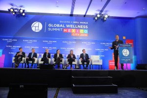 The Medical World and the Wellness World
