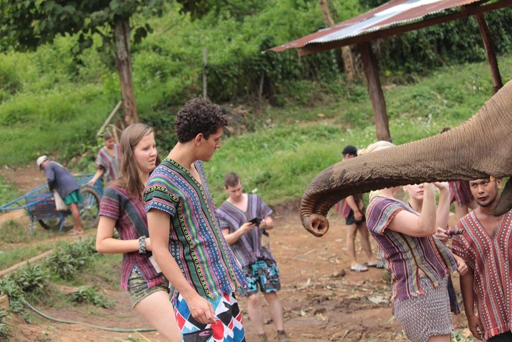 Olifanten in Thailand: mijn ervaring & mening