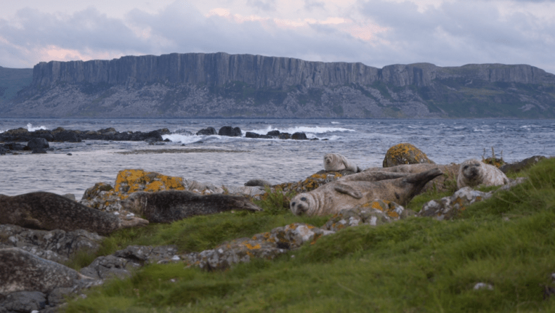 Wild kamperen in Noord-Ierland
