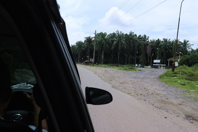 Van Medan naar Bukit Lawang