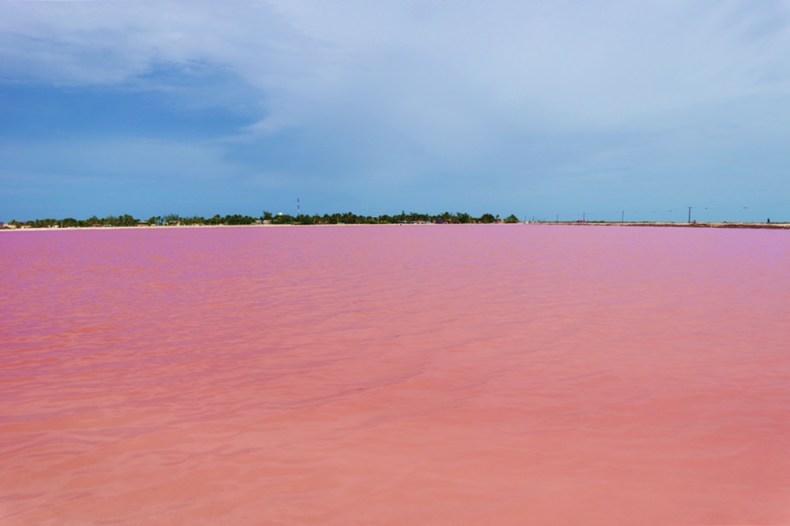Las Coloradas en Rio Lagartos