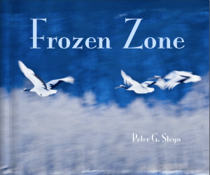 Globerovers Books, Frozen Zone, Peter Steyn