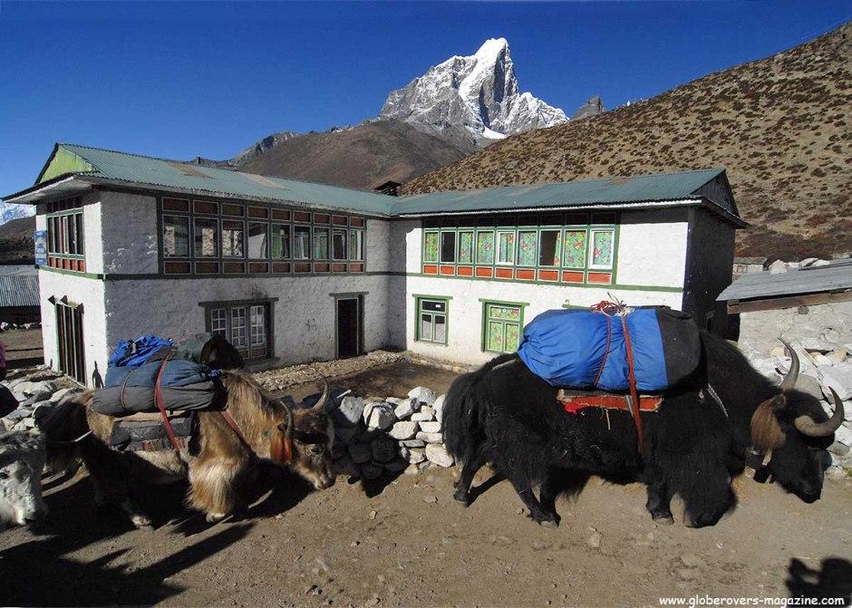 Dingboche, Himalayas, Nepal