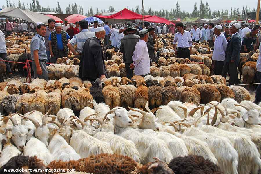 Xinjiang-China-Uyghurs--Livestock-Globerovers Magazine